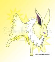 Jolteon by stormwhisper02