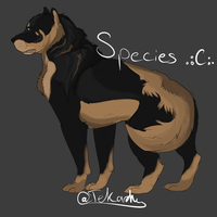 Species 4 .:C:. by Allixi