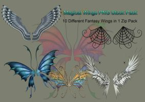 Magical Wings PNG Stock Pack by Jumpfer-Stock