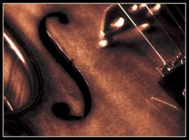 Violin by juja