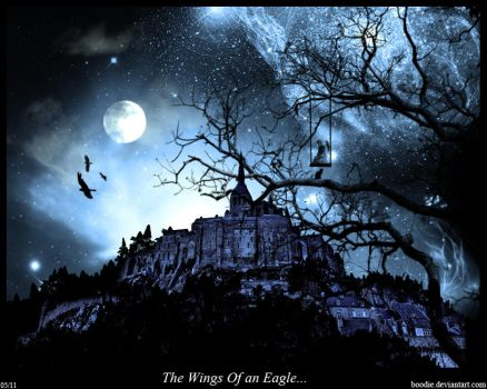 On The Wings Of An Eagle by boodie