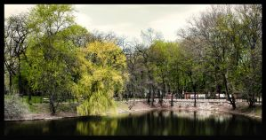 Orczy Lake IV by gabor0928