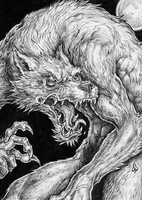 Where, Oh Werewolf. by dpdagger