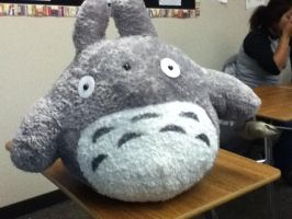 Totoro Plush by kittycatalice