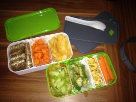 My First Bento by Julia13542