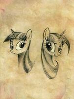 Why only one Twilight, you can have two Twilights by FoxInShadow