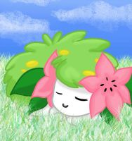 Shaymin by RaosX