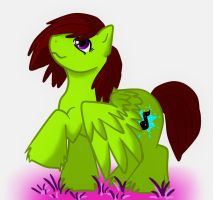 Ponyme by MyScatterBrain