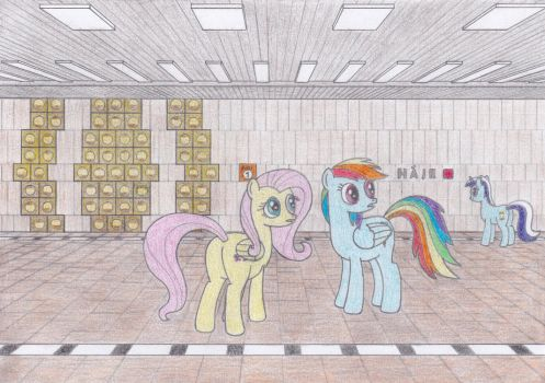 Fluttershy and Rainbow Dash at Haje by Tails-CZ