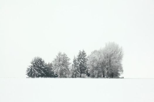 alone in the white III by indojo