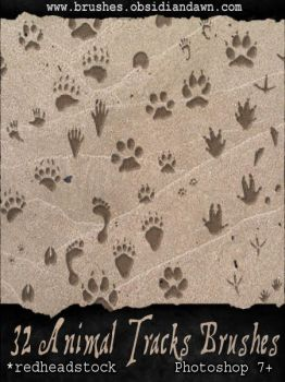 GIMP Animal Tracks Brushes by Project-GimpBC