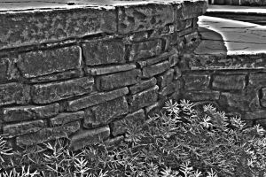 Stone Wall HDR by SomeoneNamedTom