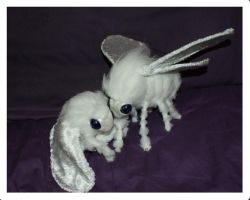Tiffa and Tommy the snuggly Poodle Moths by Sovriin