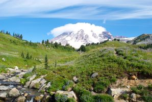 Rainier by AmyThompson