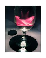 drink for pink by bayot