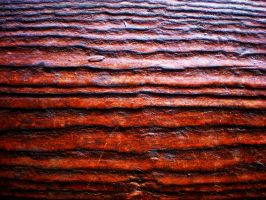 wood texture 10 by redwolf518