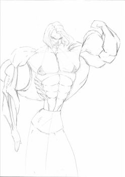 Rough Sketch by wmatera