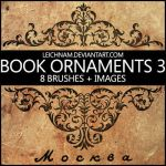 Book Ornaments Brushes 3 by Leichnam