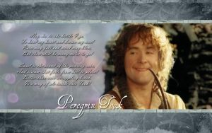 Peregrin Took by drkay85