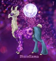 Daily Llama Project - Discollama by TrollGirl