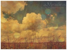 Miracle by Engel-der-stadt