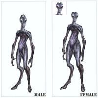 Corrected Female Salarian by Asurael-Returns