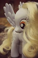 Derpy's Adventure by PhoebeSmithPhotog