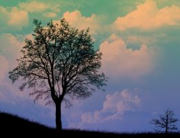 the lonely tree, no wait.. by danielorbital