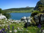 Picos de Europa 113 - Mountain lake and aconite by HermitCrabStock