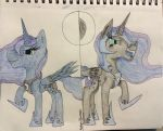 Luna's Sides by RainbowShimmers