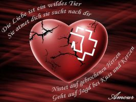 Amour Rammstein by Erymnys