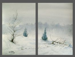 Winter II by mwolski