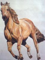 Galloping by Catherine1992