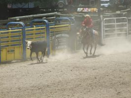 Rodeo59 by Jean3071
