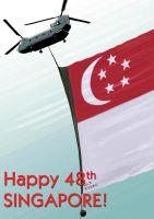 Singapore National Day 48 by Spring-O