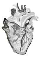 wolf in Heart No Pen by daylover1313