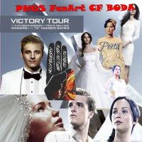 Pack PNG de Katniss y Peeta Boda Catching Fire by jdmh96