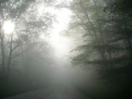 Foggy Morning the Parkway by Pi-ray