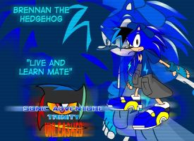 Sonic Adventure Trinity Design by Blackan