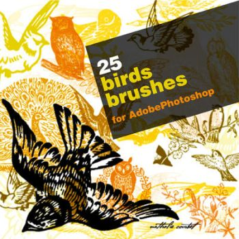 25 hand drawn bird brushes for Adobe Photoshop by nataliecourbete