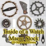 Inside Of A Watch Macro Stock By Horitsu by Horitsu
