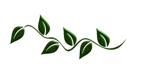 green leaves png by Melissa-tm
