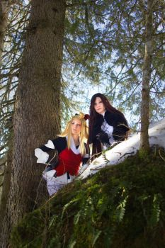 Bravely Default (Forest 2) by white---butterfly
