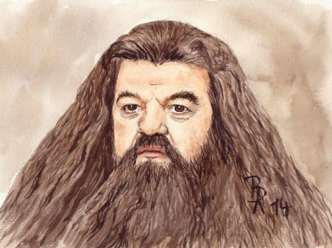 Rubeus Hagrid by LoonaLucy