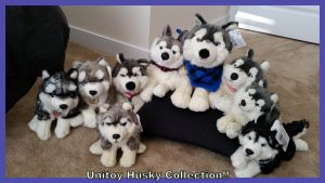 Unitoy Husky Collection! by Vesperwolfy87