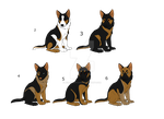 Mystery GSD Adoptable Puppies Batch 2 -Open- by jellybean12365