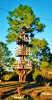 Our Treehouse Built by My Husband {Photo 23} by Empress-XZarrethTKon