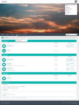 Native - SMF Theme by Raphisio