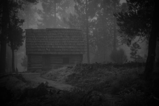 The Cabin II by gorcrow