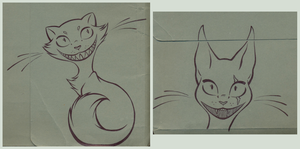 Cats from my file by Alija